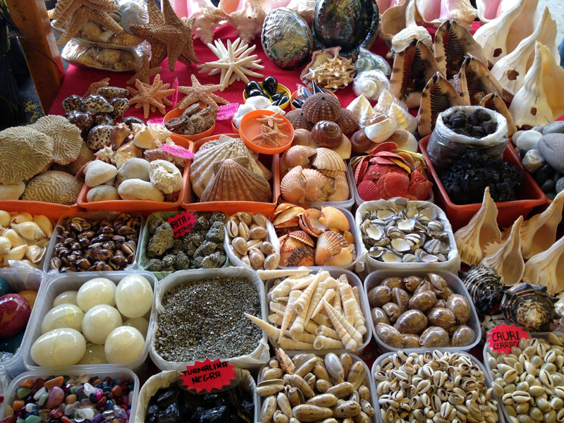 mercado-de-sonora-conchas-e-pedras