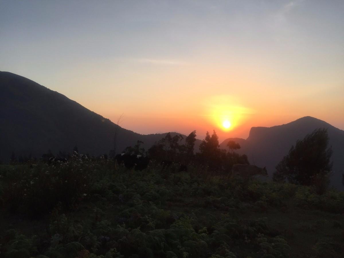 eusouatoa_kerala_munnar_nascer do sol